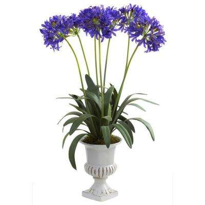 African Lily with Urn in Purple