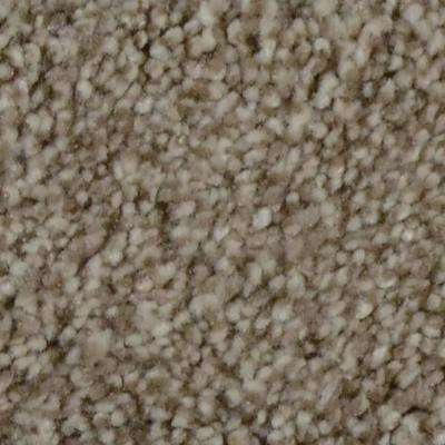 Carpet Sample-Autumn Charm -Color Maplecrest Texture 8 in. x 8 in.
