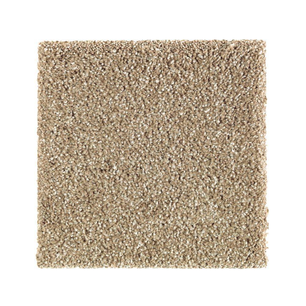 Petproof carpet sample whirlwind ii color carrington for Pet resistant carpet