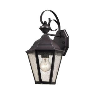 Titan Lighting Cotswold 1-Light Oil Rubbed Bronze Outdoor Wall Lamp by Titan Lighting