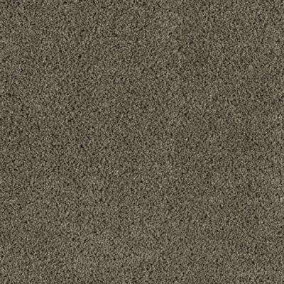 Carpet Sample - Wesleyan II - Color Forest Canopy Texture 8 in. x 8 in.
