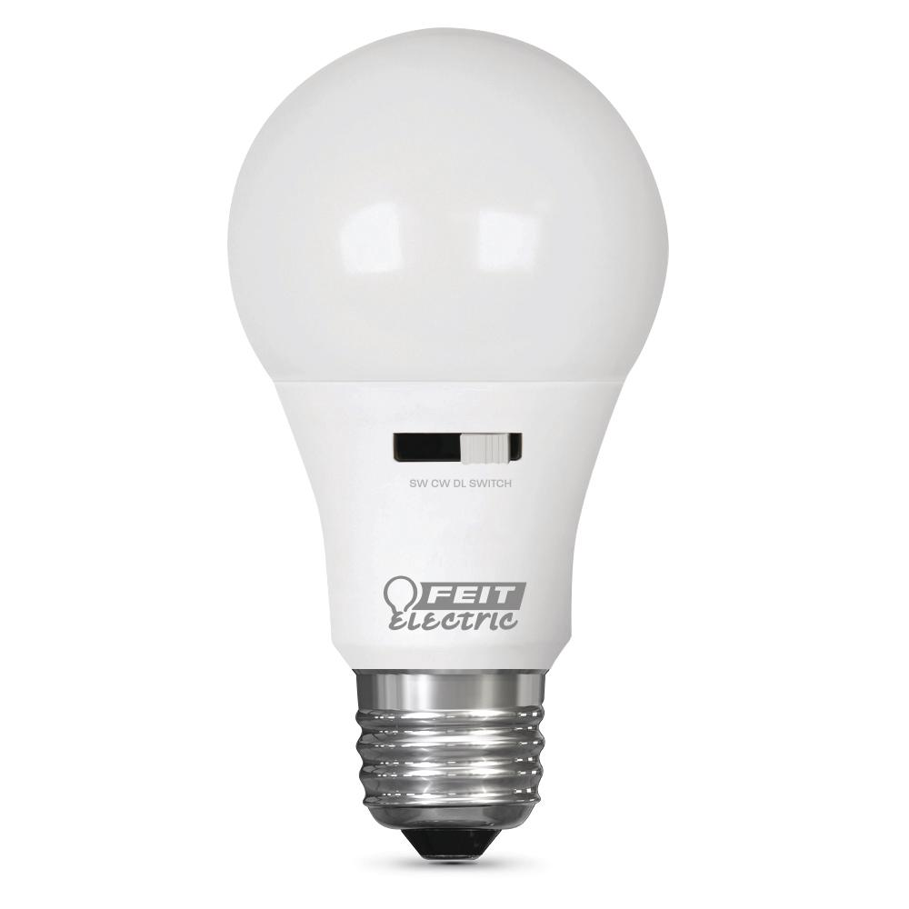 Home Depot Colored Light Bulbs: Feit Electric 60-Watt Equivalent Soft White/Cool White