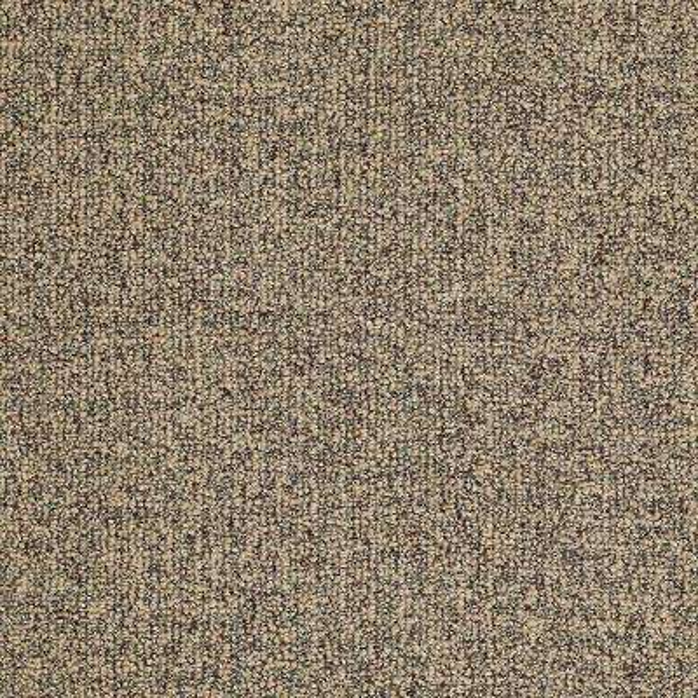Carpet Sample - Burana - In Color Fortune Cookie 8 in. x 8 in.