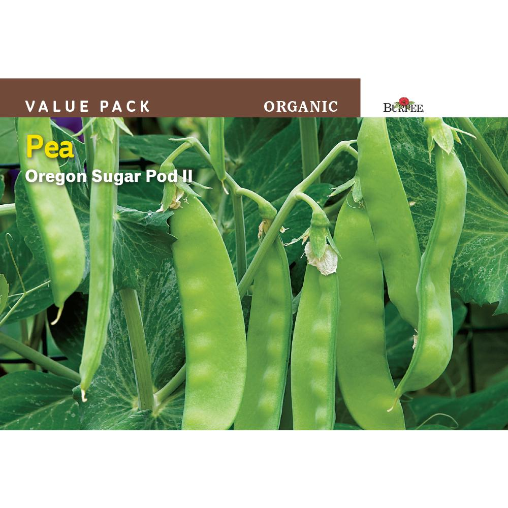 Pea Oregon Sugar Pod Organic Value Pack Seed