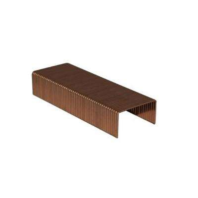 5/8 in. L 1-3/8 in. Crown Carton Closing Staples (2,400-Piece)