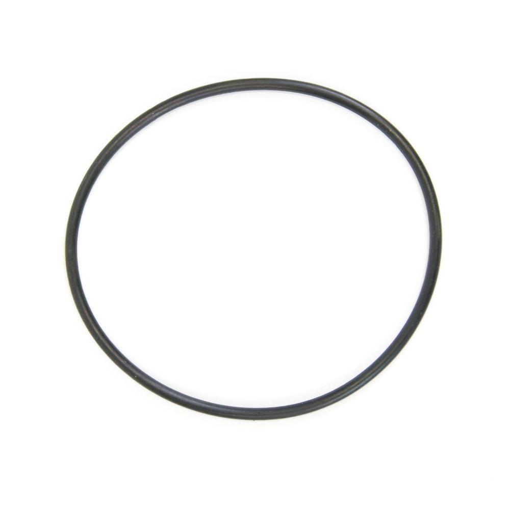 General Electric WS03X10039 Water Filter O-Ring