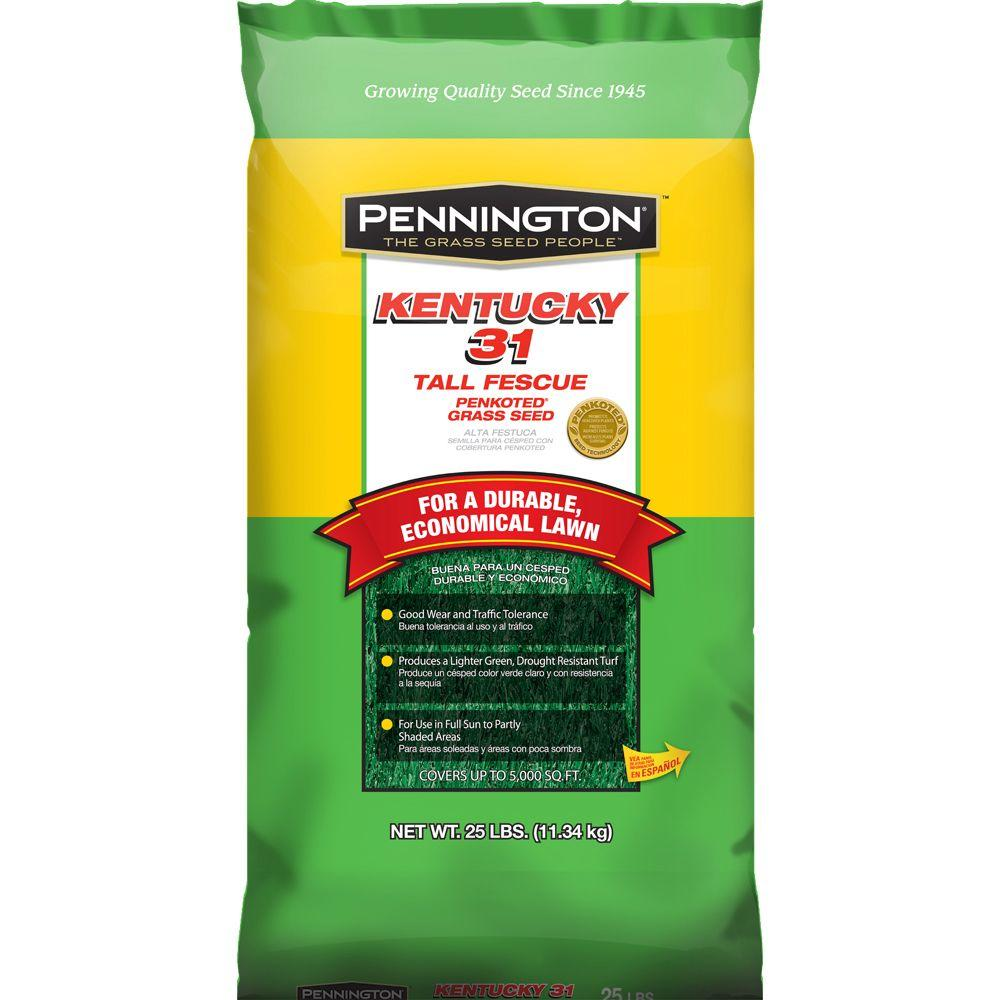 Scotts Kentucky 31 25 lb. Tall Fescue Penkoted Grass Seed (24-Bags)