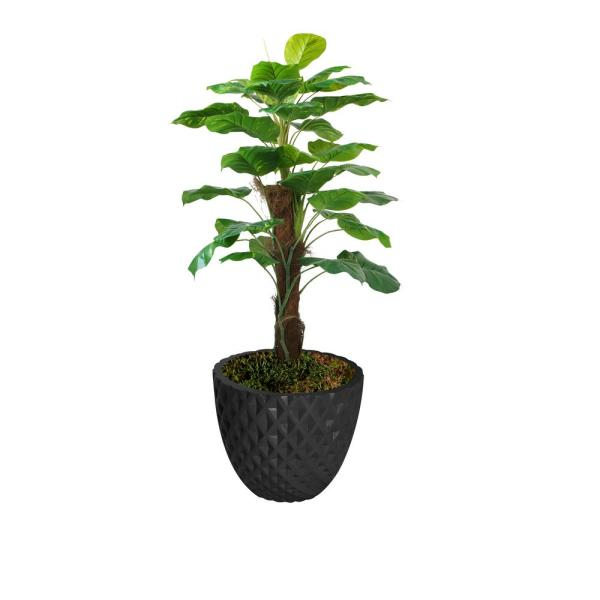 Laura Ashley 53.6 in. Real touch greenery in Fiberstone Planter VHX144205