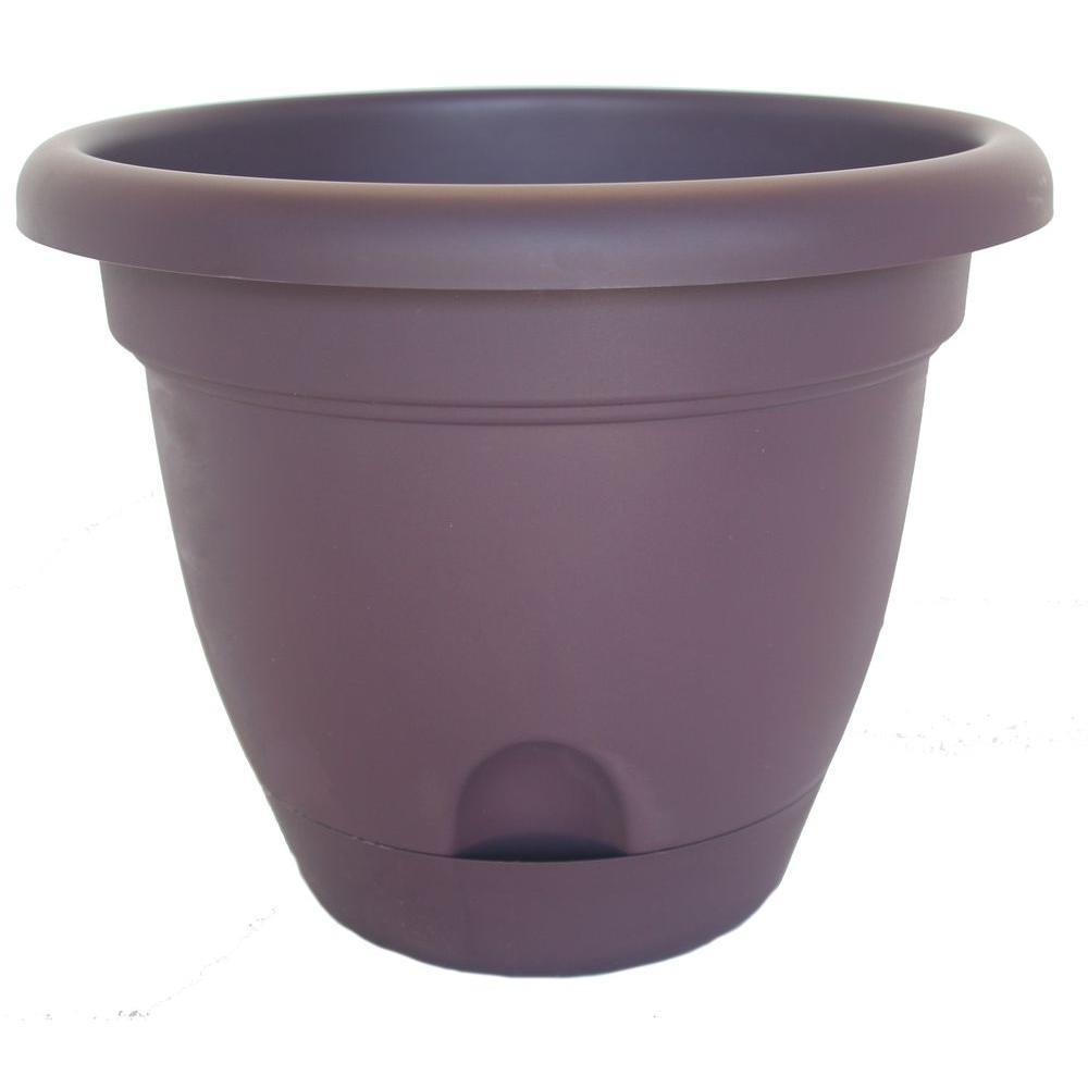 Bloem Lucca 12 in. Round Exotica Plastic Planter (6-Pack)