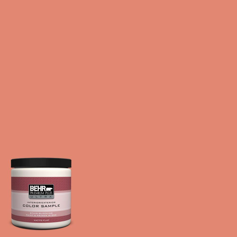 8 oz. #200D-5 Guava Jam Interior/Exterior Paint Sample