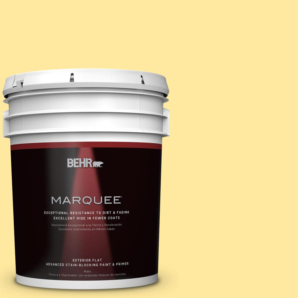 5-gal. #P300-4 Rise and Shine Flat Exterior Paint