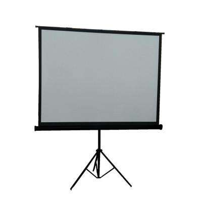 100 in. Portable Projection Screen