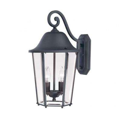 Monti 2-Light Black Outdoor Wall Mount Lantern