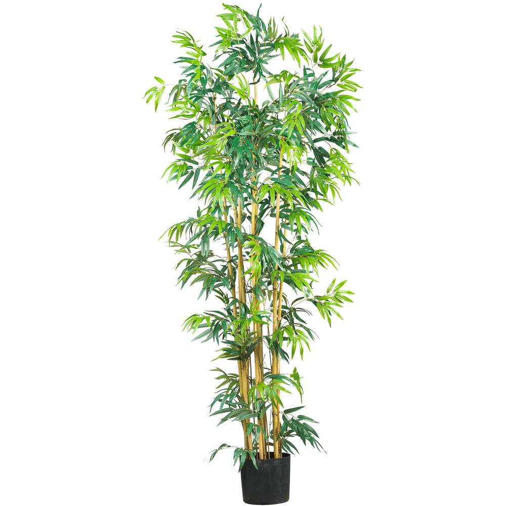 6 ft. Bambusa Bamboo Silk Tree
