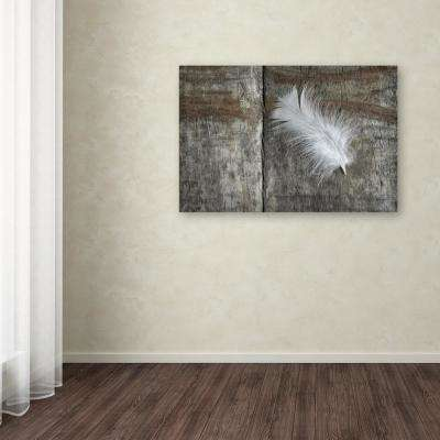 "30 in. x 47 in. ""Feather on Wood II"" by Cora Niele Printed Canvas Wall Art"