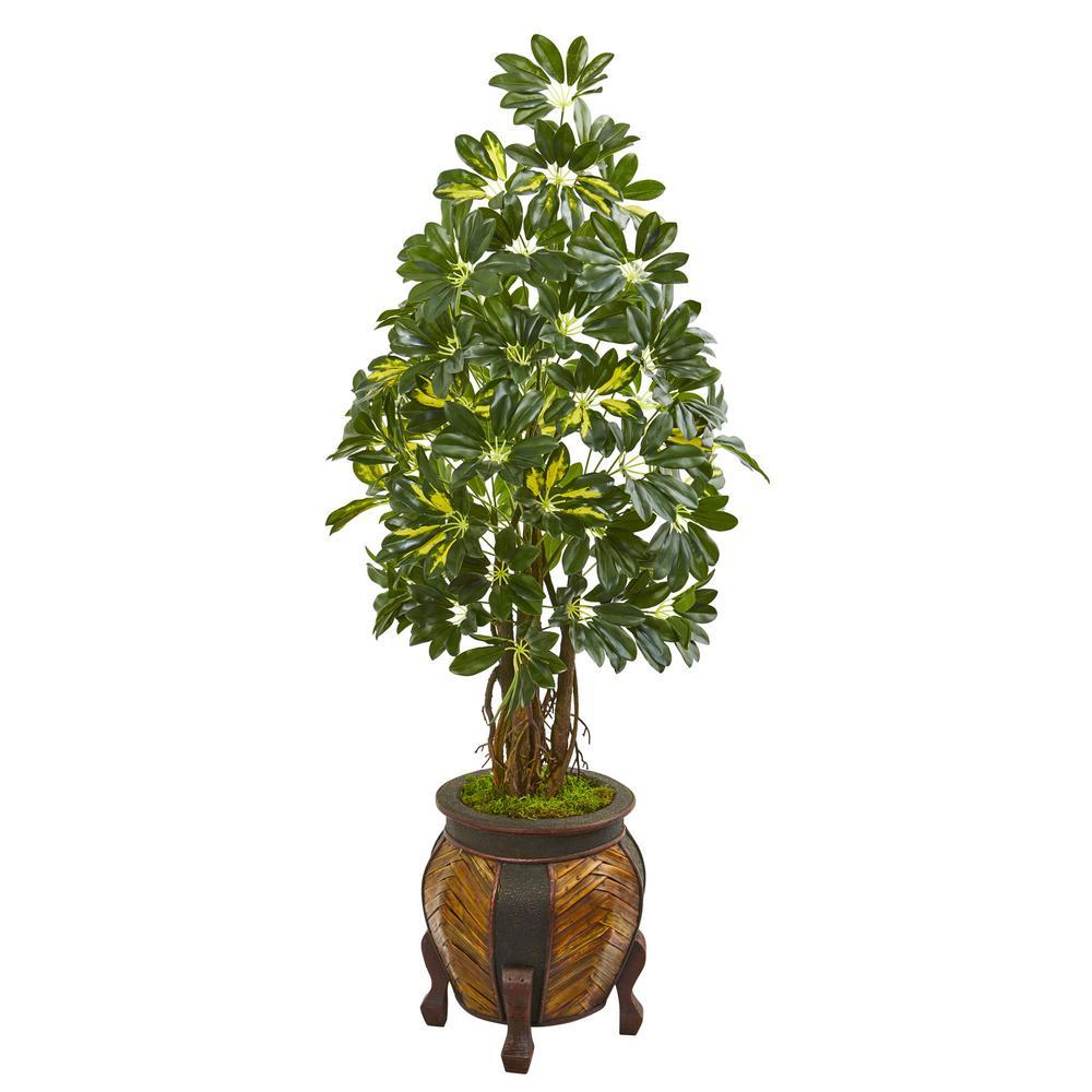 Indoor 57-In. Schefflera Artificial Tree in Decorative Planter