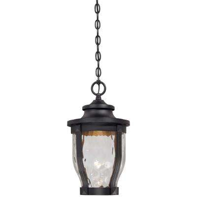 Merrimack 1-Light Black Outdoor Integrated LED Hanging Lantern