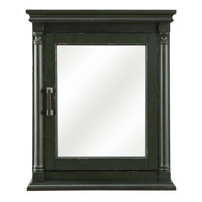 Greenbrook 25 in. W x 30 in. H Surface Mount Mirrored Medicine Cabinet in Vintage Forest Green