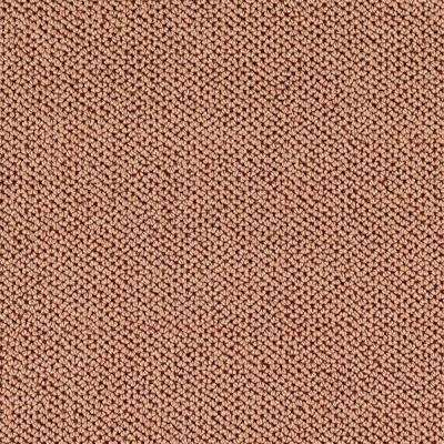 Priority - Color Amber Dawn Pattern 12 ft. Carpet