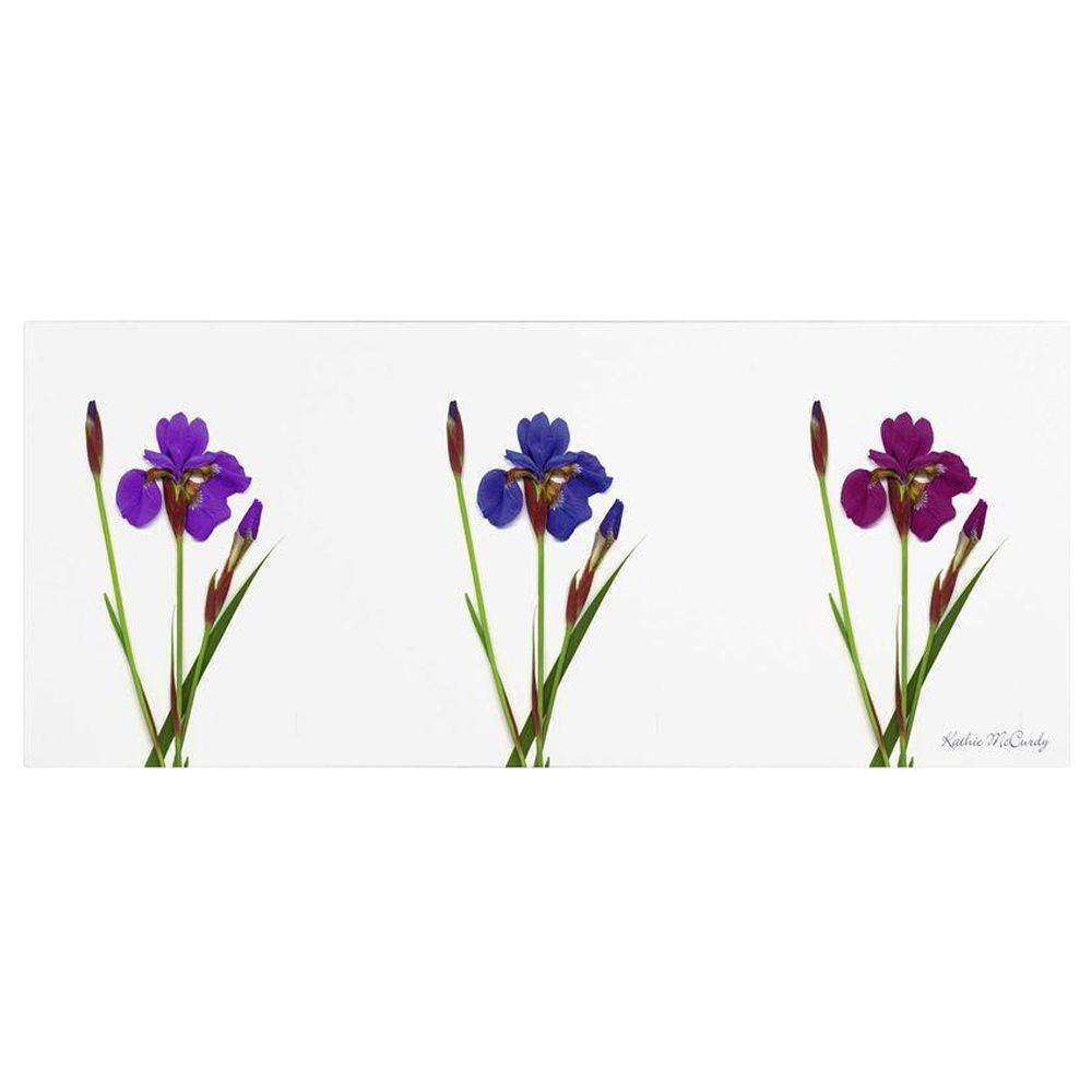 6 in. x 19 in. Siberian Iris Triptych Canvas Art