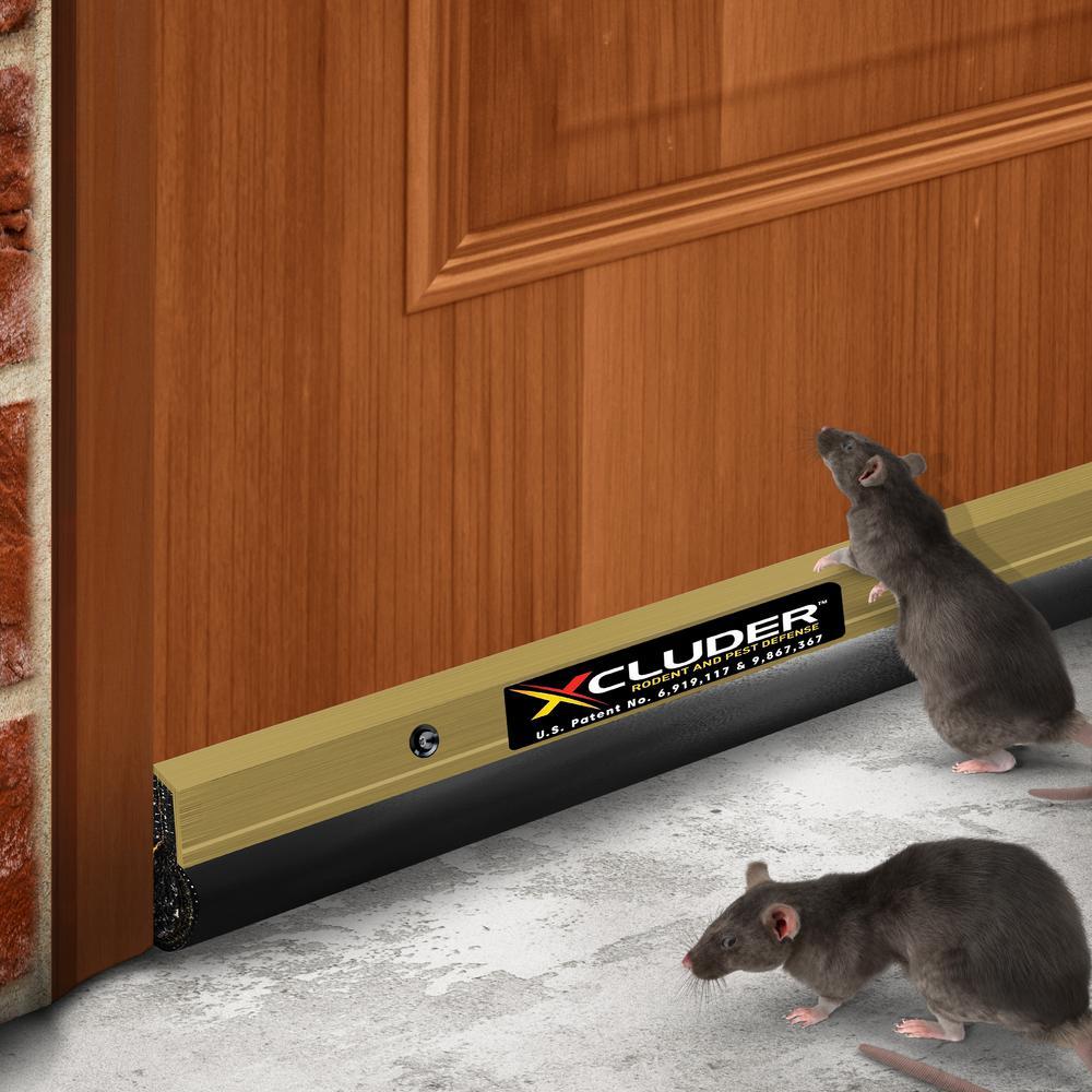 Residential 48 in. Gold Pest Control Door Sweep