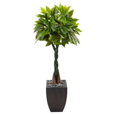 Indoor Money Artificial Tree in Black Square Planter