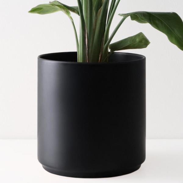8 in. Black Ceramic Indoor Planter (7 in. to 12 in.)