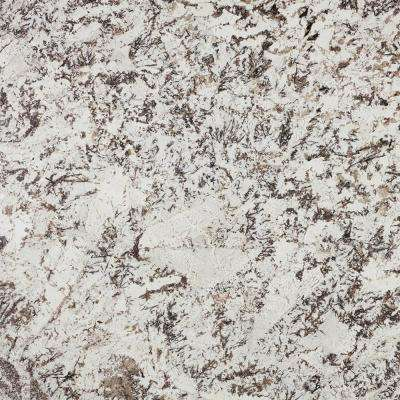 3 in. x 3 in. Granite Countertop Sample in Delicatus White