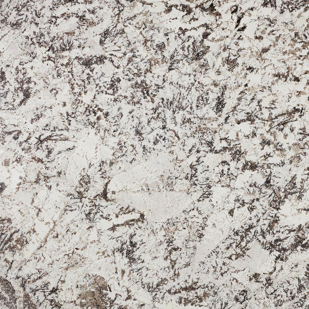 3 in. x 3 in. Granite Countertop Sample in Delicatus White