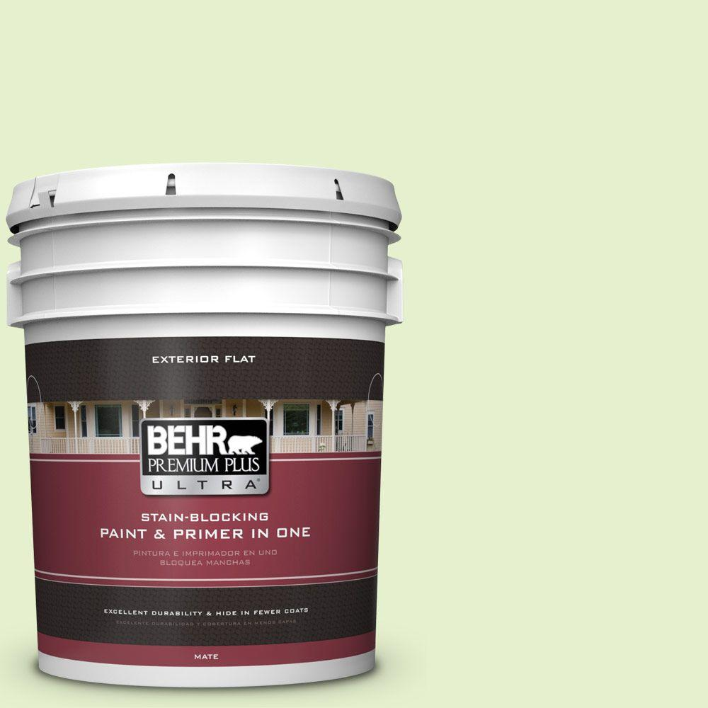 5-gal. #420C-2 Water Sprout Flat Exterior Paint