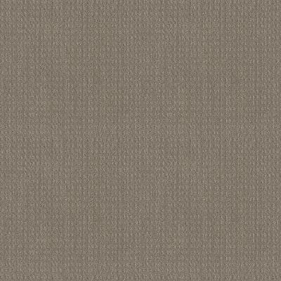 Boxton - Color Virtual Taupe Pattern 12 ft. Carpet