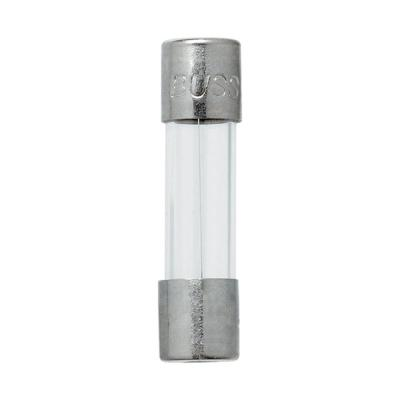 GMA Series 500 mA Silver 5mm x 20mm Fuses (2-Pack)