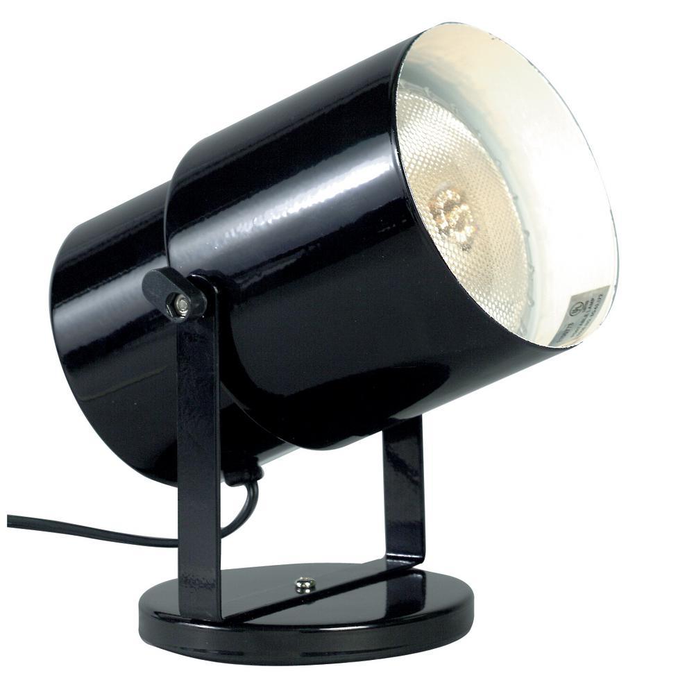 5.75 in. 1-Light Black Floor Lamp