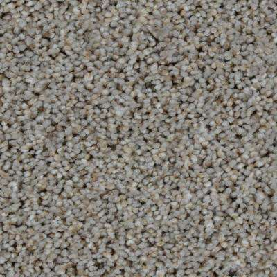 Carpet Sample - Trendy Threads II - Color Oakmont Texture 8 in. x 8 in.