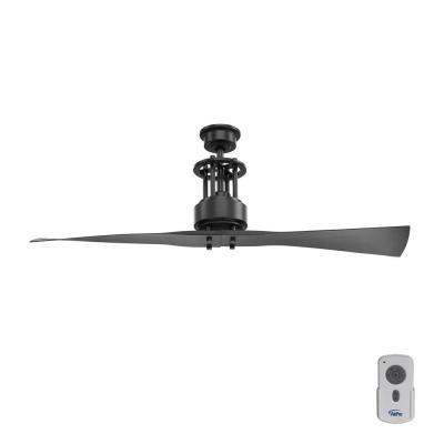 Spades 56 in. Indoor Graphite Black 2 Blade Minimalist Ceiling Fan with Remote