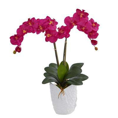 Double Phalaenopsis Orchid Artificial Arrangement in White Ceramic Vase