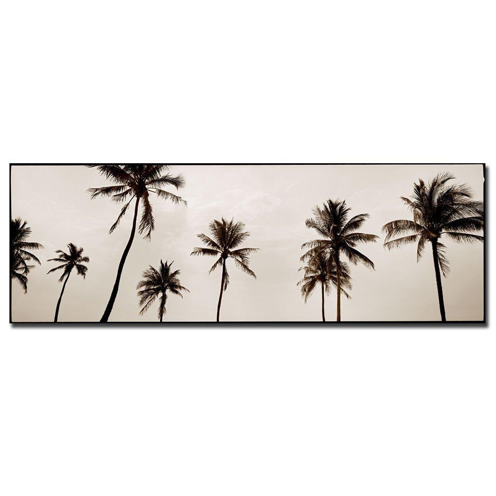 14 in. x 47 in. Black & White Palms Canvas Art