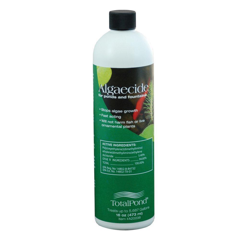16 oz. Algaecide for Ponds and Fountains