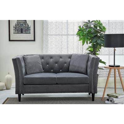 Rivas 62.2 in. Grey Velvet 2-Seater Loveseat with Square Arms