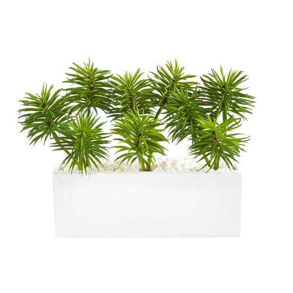 Nearly Natural Indoor Spiky Succulent Garden Artificial Plant in White Ceramic