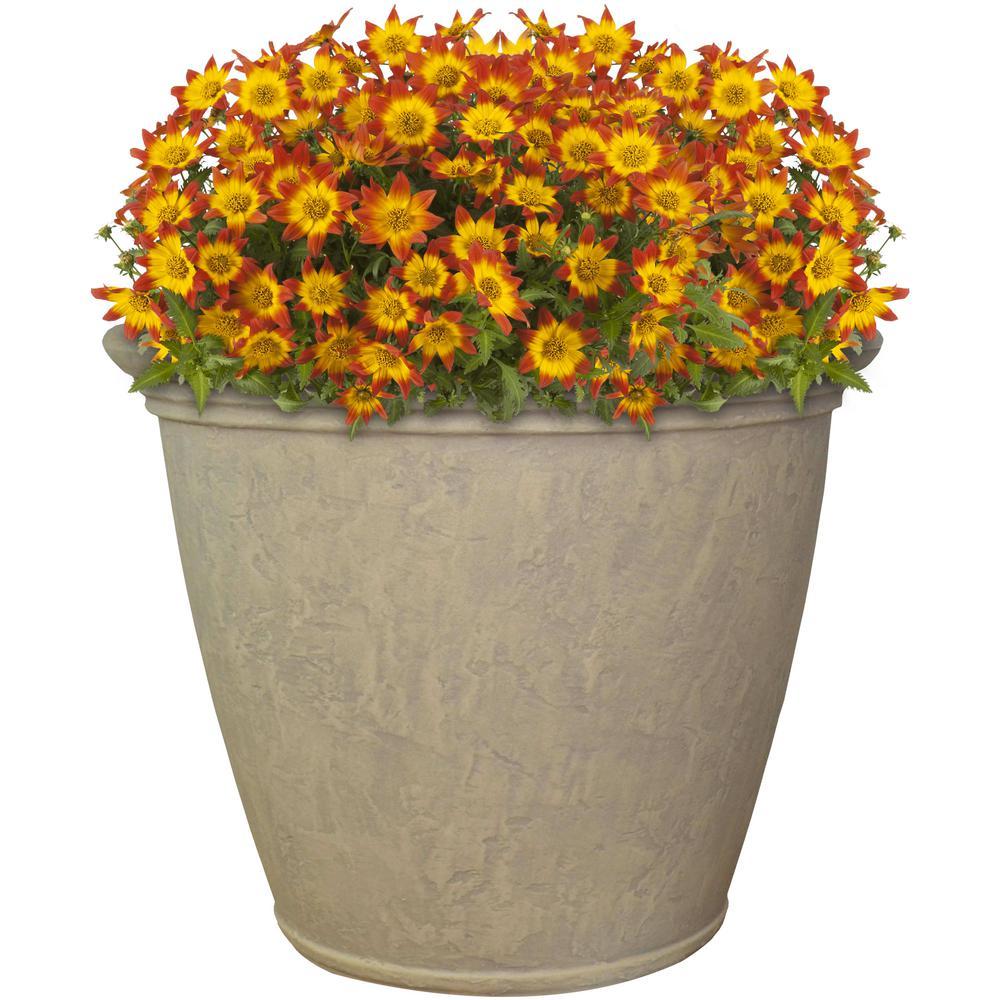Sunnydaze Decor 24 In Beige Anjelica Poly Single Flower Pot