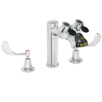 8 in. 2-Handle Laboratory Faucet with Eye/Face Wash in Polished Chrome