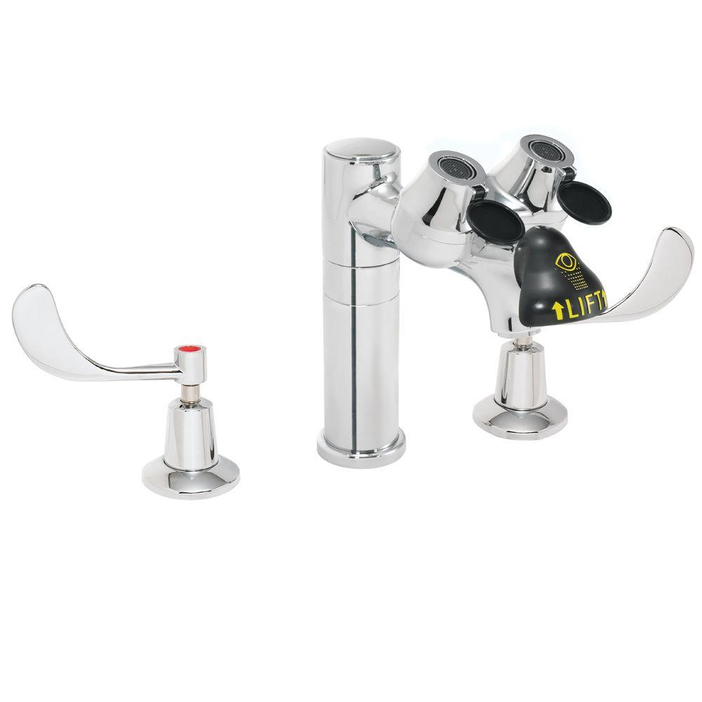 Speakman 8 in. 2-Handle Laboratory Faucet with Eye/Face Wash in ...
