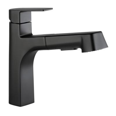 Xander Single-Handle Pull-Out Sprayer Kitchen Faucet in Matte Black