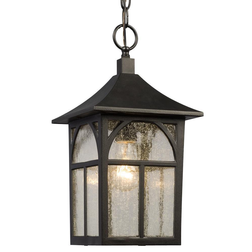 Negron 1-Light Outdoor Black Hanging Lantern