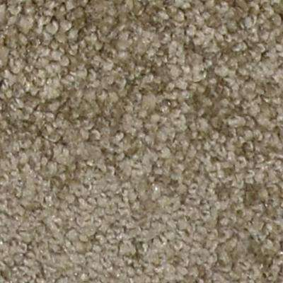 Carpet Sample - Harvest I - Color Newville Texture 8 in. x 8 in.