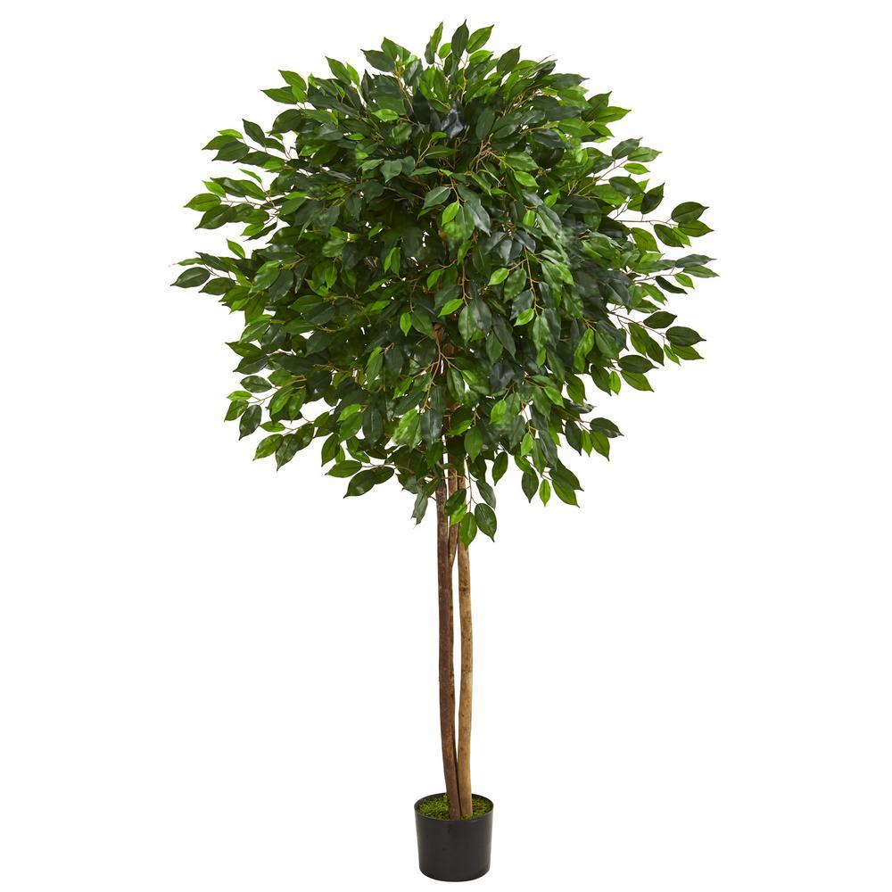 Indoor 6.5 in. Ficus Artificial Tree