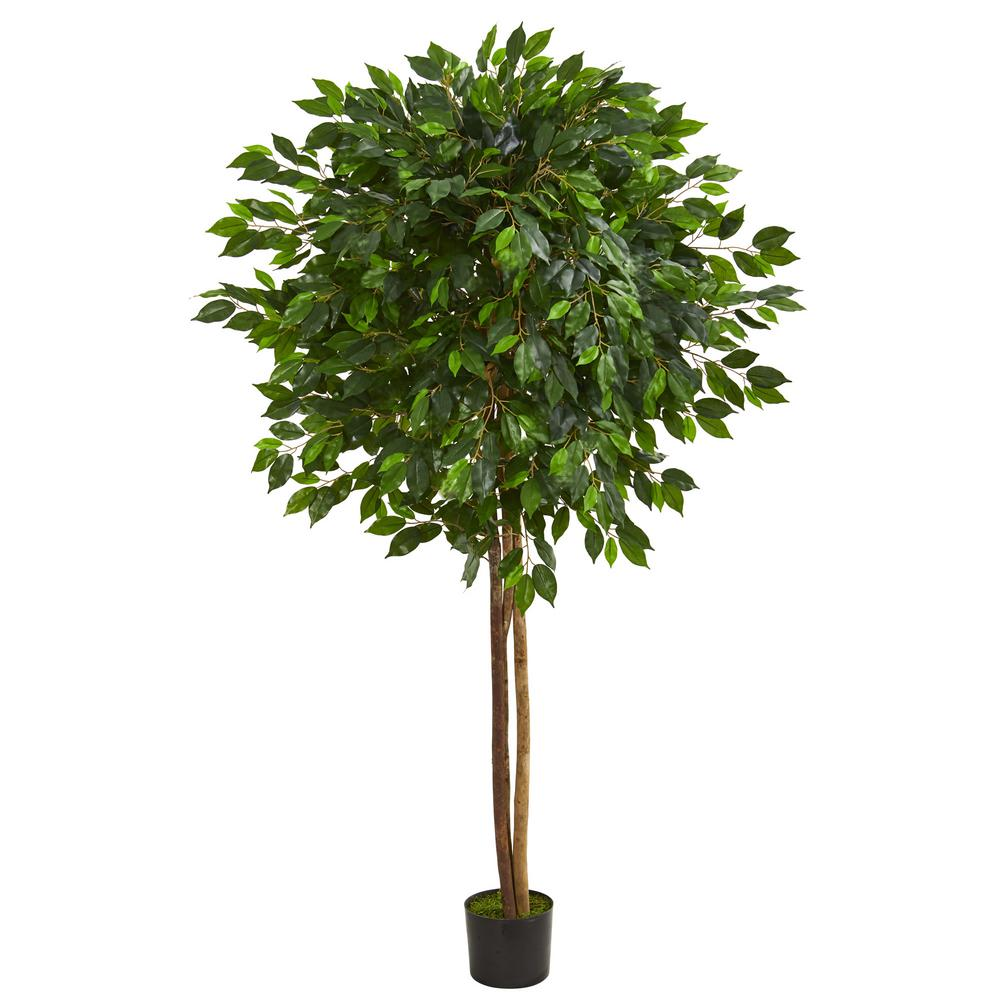 Nearly Natural Indoor 6 5 In Ficus Artificial Tree 5571