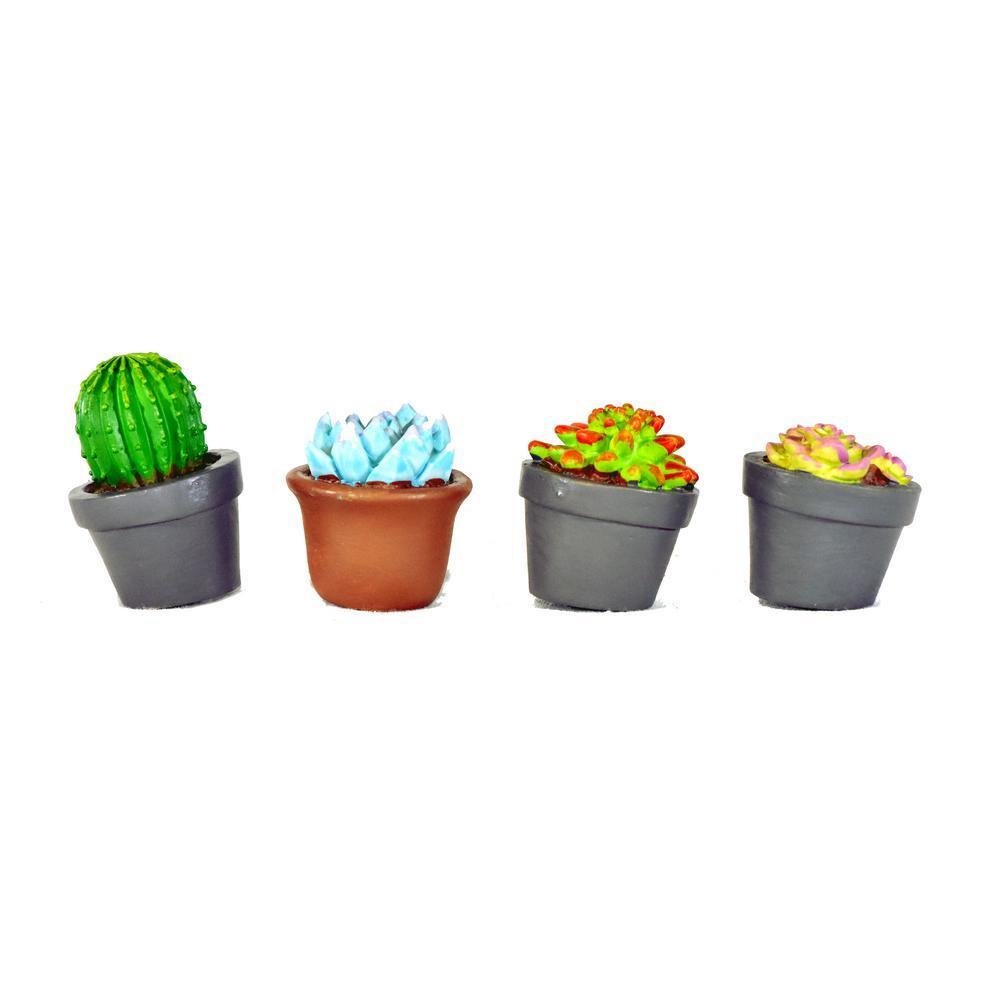 MiniGardenn Fairy Garden Miniature Succulent Plants (4-Pieces)