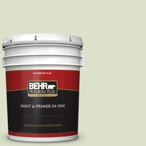 Behr Premium Plus 5 Gal 420e 2 Palm Breeze Flat Exterior Paint And Primer In One 405005 The Home Depot